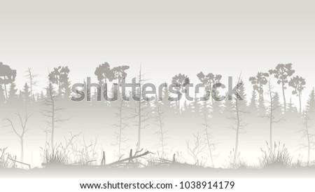 horizontal illustration misty