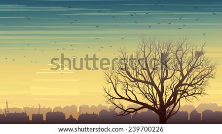 horizontal illustration of old