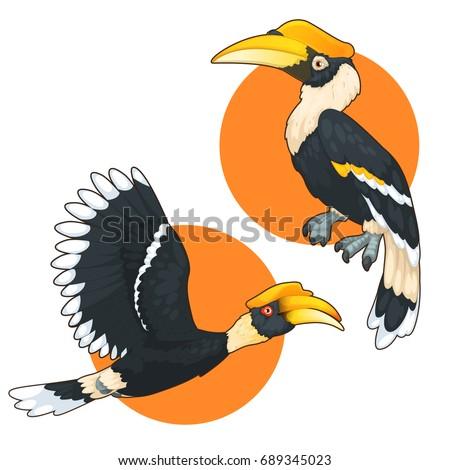 Vector Hornbill Bird Download Free Vector Art Free Vectors
