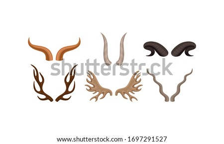 Horns of Different Animals with Ram and Deer Antlers Vector Set Foto stock ©