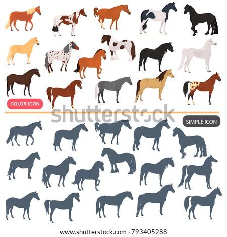 Horse breeds color flat icons set. Horse black silhoutte simple icons set