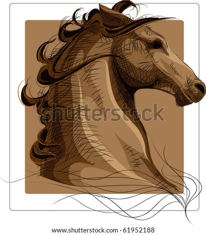 Horse head with strokes over color image