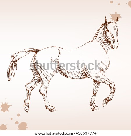 Horse  in competition, engraving. drawing horse