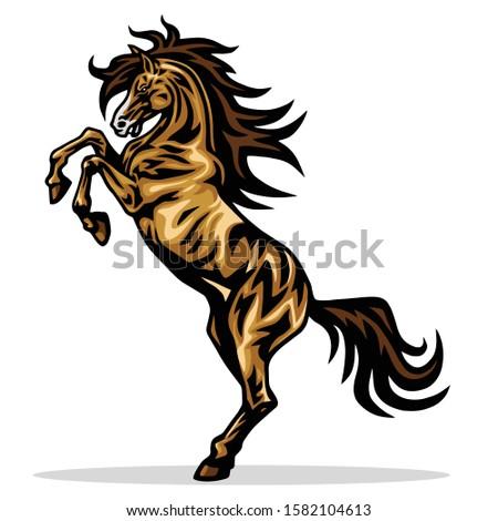 horse mustang rearing vector