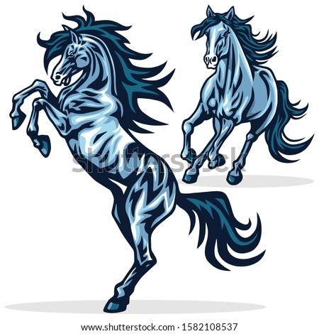 horse mustang running rearing