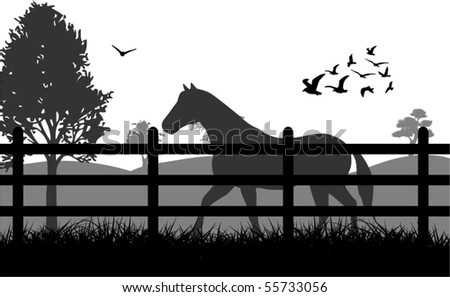 Stock Photo Horse on the grass illustration