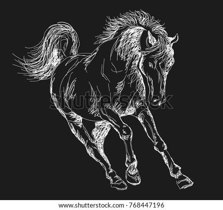 horse  pony  running horse  chalked horse
