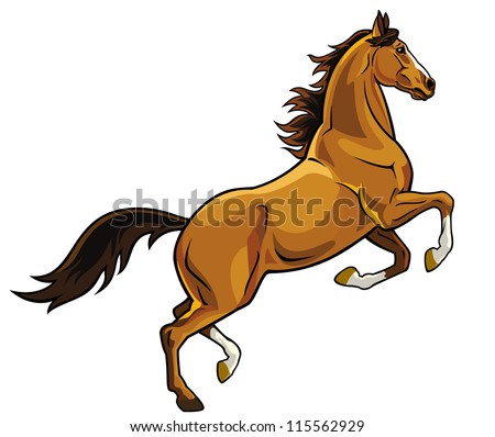Stock Photo horse,rear,vector picture isolated on white background,rearing stallion,single image