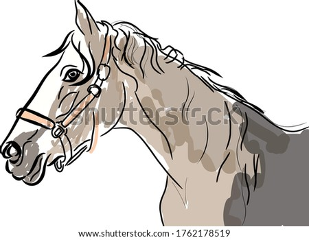 horse side face abstract vector