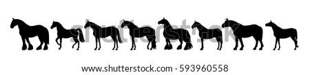 Horse silhouette banner