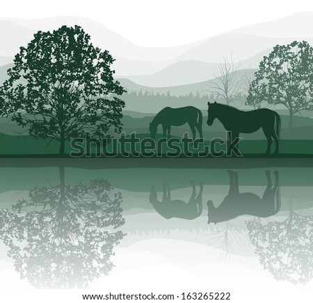 horses on a meadow with trees