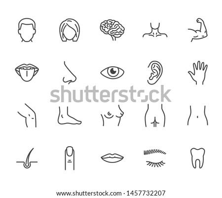 Houman body parts flat line icons set. Man, woman head, brain nose, mouth, foot, ear, lips vector illustration. Outline signs for plastic surgery medical clinic. Editable Strokes.