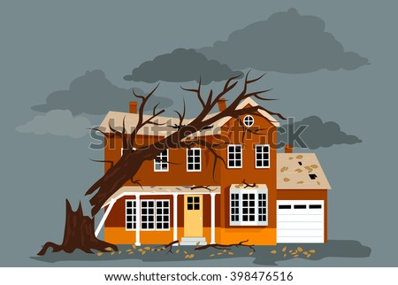 house damaged by a fallen tree