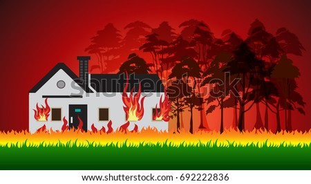 house on fire and forest fires