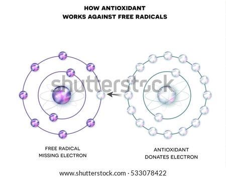 Shutterstock How antioxidant works against free radicals. Antioxidant donates missing electron to Free radical, now all electrons are paired.
