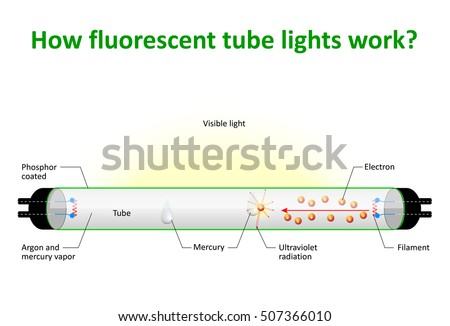 how fluorescent tube lights