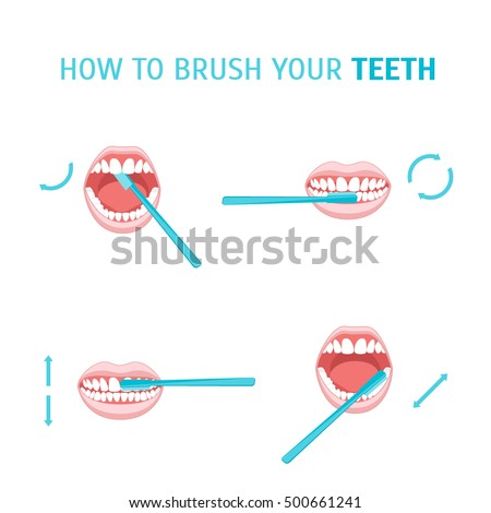 How To Brush Your Teeth. Brushing Poster with the Instruction Manual. Order Correct Movements. Vector infographic template flat illustration