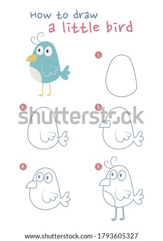 How to draw a little bird vector illustration. Draw a little bird step by step. Cute bird drawing guide. Cute and easy drawing guidebook.