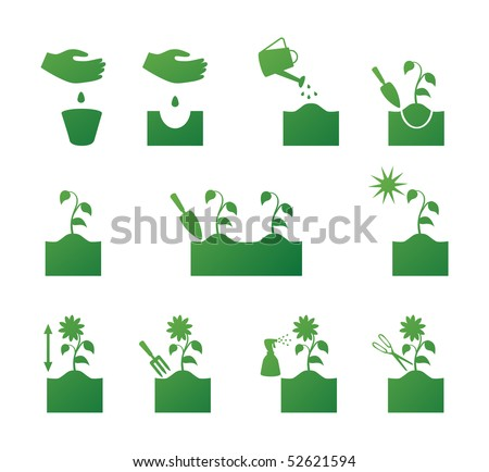 How to put flowers. The instruction in pictures - stock vector