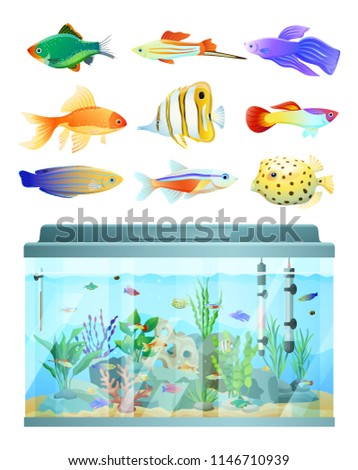 Huge aquarium and various fishes set colorful card isolated on white background vector illustration of underwater dwellers and their big glass home