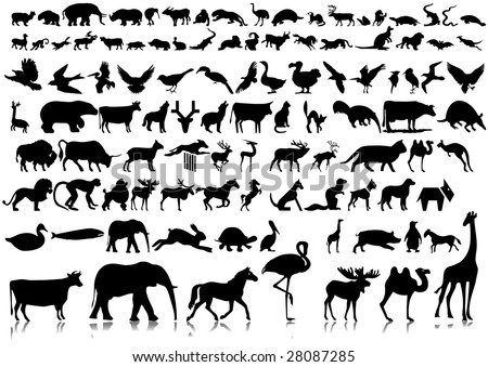 silhouettes of animals. of silhouettes of animals.
