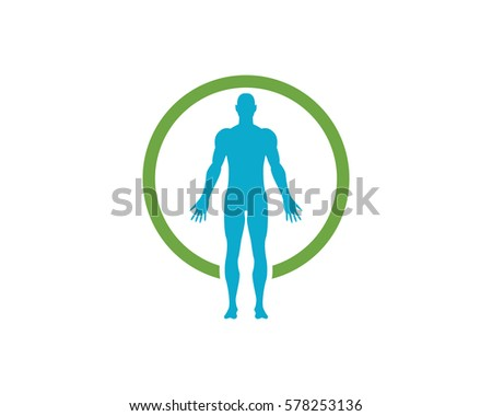 human anatomy of man vector