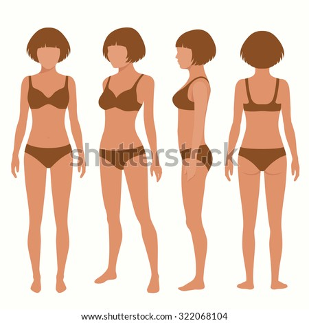 Royalty Free Stock Photos And Images Human Body Anatomy Front