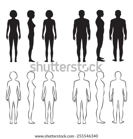Human Body Anatomyfront Vector Man Woman Silhouette