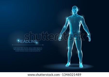 Human Body 3D Polygonal Wireframe Blueprint