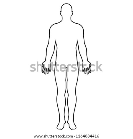 Human body line silhouette. Vector. Isolated.