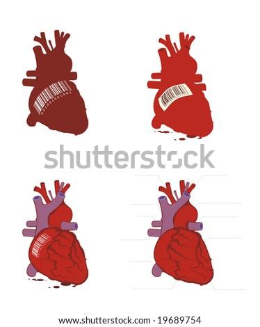 human body heart. stock vector : Human body on