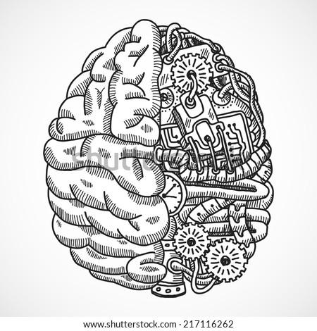 human brain as engineering