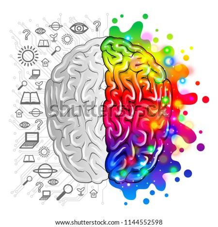 Human brain concept logic and creative vector photo-realistic illustration