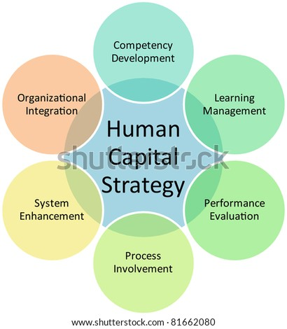 Human capital business diagram management strategy concept chart vector illustration
