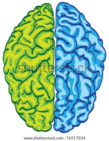 human color brain isolated - illustration