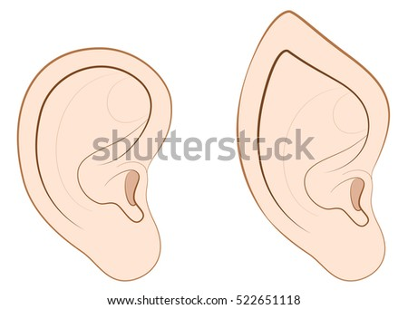 human ear and pointed ear of an