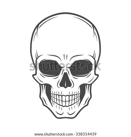 human evil skull vector jolly