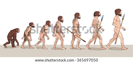 human evolution man evolution