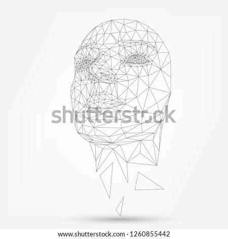 human face  polygonal mesh