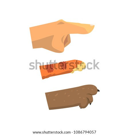 Human hand, cat and dog paw pointing right, pet shop, veterinary care concept vector Illustration on a white background