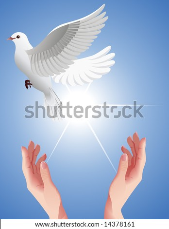 stock vector Human hands setting free white dove vector illustration