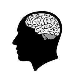 Human head silhouette with brain illustration