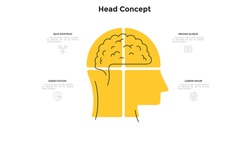 Human head with brain inside divided into 4 sectors. Concept of four steps of smart strategic business thinking. Minimal infographic design template. Modern flat vector illustration for presentation.