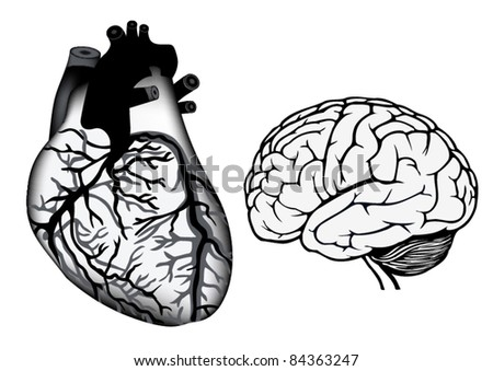 Human Heart Vector Black And White Human Heart And Brain in Black