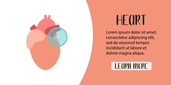 Human heart. Cardiology. Diagnostics of cardiovascular diseases. Vector flat illustration. Perfect for banner, landing page