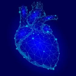 Human Heart Internal Organ Triangle Low Poly. Connected dots blue color technology 3d model medicine healthy body part vector illustration art