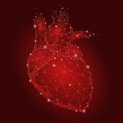 Human Heart Internal Organ Triangle Low Poly. Connected dots red color technology 3d model medicine healthy body part vector illustration art