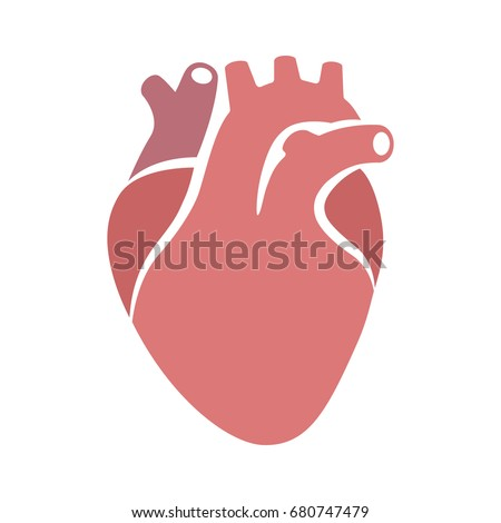 Human heart organ with aorta and arteries flat vector color icon for medical health apps and websites