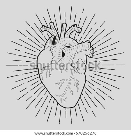 Human heart. Sunburst. Can be used to print on a T-shirt.