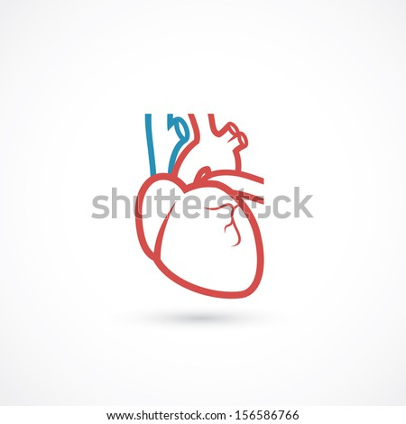Human heart symbol vector illustration